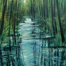 biebrza - rzeka